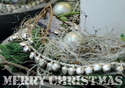 Weihnachtskarte-Postkarte_216