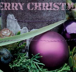 Weihnachtskarte-Postkarte_217