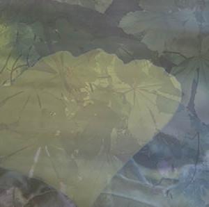 Ginkgoblatt-Postkarte_251t