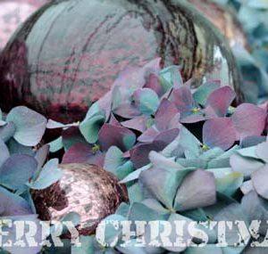 Weihnachtskarte-Postkarte_221