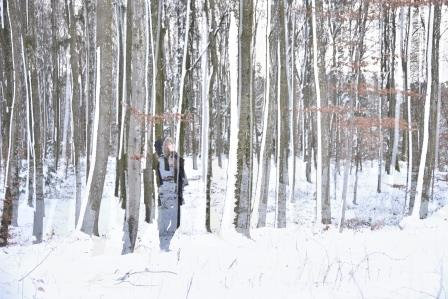 Wald-Postkarte_279